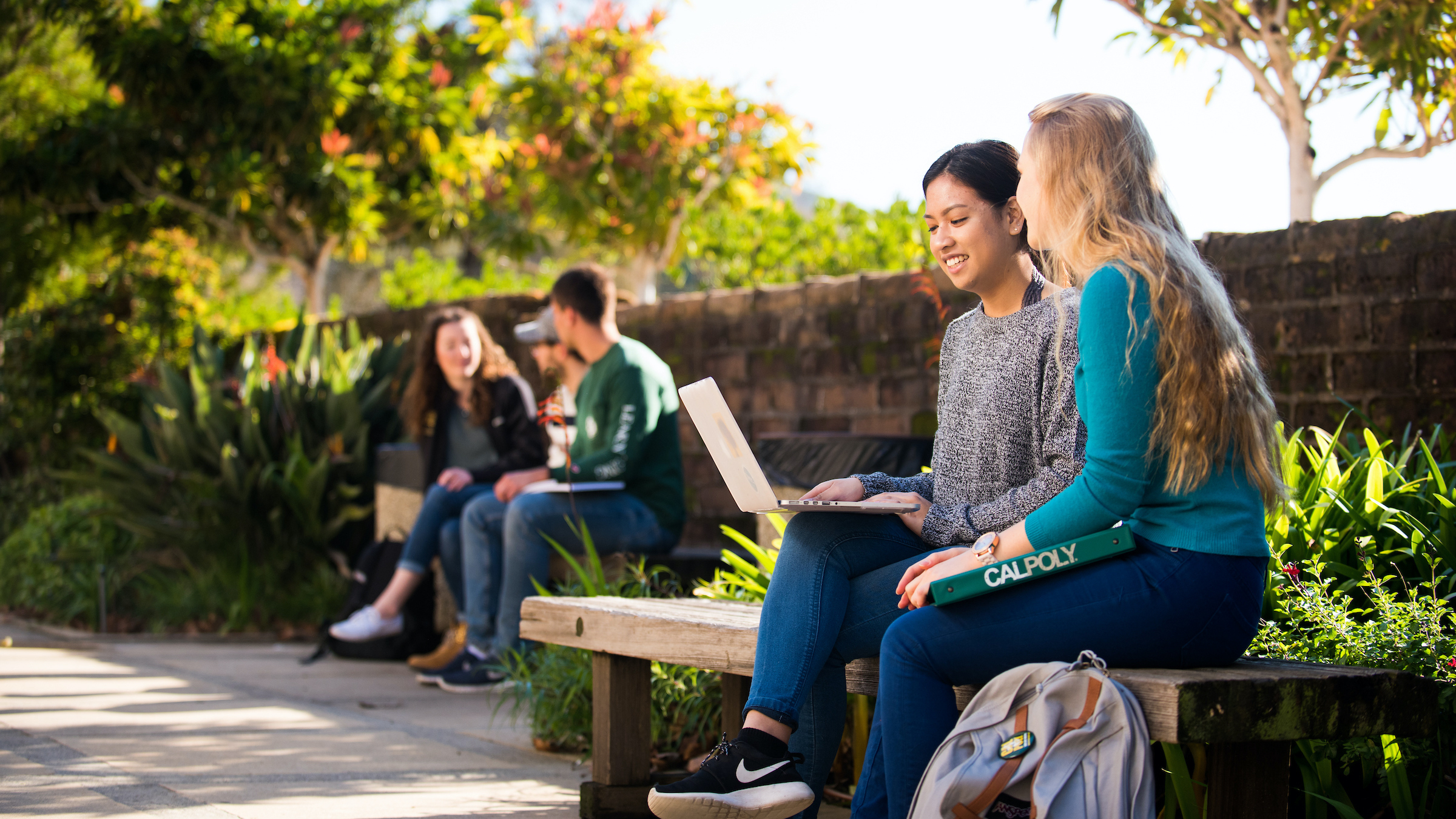 students on a bench on campus looking at a laptop